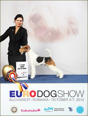 EUROPEAN DOG SHOW 2012