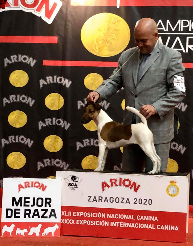 Mary is Bob & Pirineos Aragon Winner !!